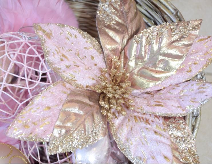 Fleurs poinsettia pétales rose et...